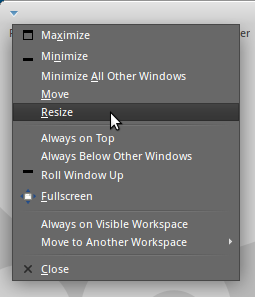 Resize method 5: Using the window-menu
