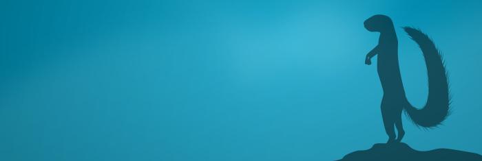 Xubuntu 16.04 LTS release art